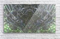ad7a2a78e9fb779efea8123249d91b90.070_UG  Acrylic Print
