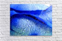 Blue Lips  Acrylic Print