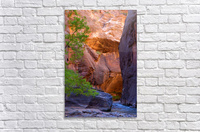 The Narrows  Acrylic Print