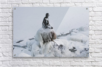 Frozen canal near statue of The Little Mermaid   Acrylic Print