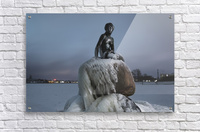 Frozen statue of The Little Mermaid  Acrylic Print