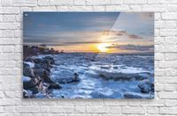 Winter contrast  Acrylic Print