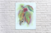 Squirrel in the Autumn Dogwood  Acrylic Print