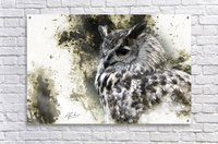 European Eagle Owl  Acrylic Print