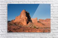 Desert Scape  Acrylic Print