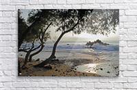 Wild Hawaii Beach  Acrylic Print