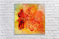 Tropical Hibiscus Floral  Acrylic Print