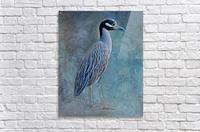 Night Heron Blues  Acrylic Print