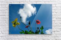 Happy Spring Flowers  Acrylic Print