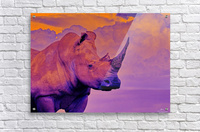 White Rhino orange purple  Acrylic Print
