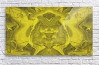 1561600384177  Acrylic Print