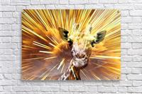 Giraffe pop 7   Acrylic Print