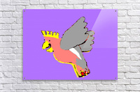 Laughing Galah - Purple  Acrylic Print