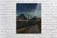 The Long Road Traveled  Acrylic Print