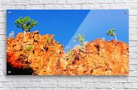 Skyline - Ormiston Gorge  Acrylic Print