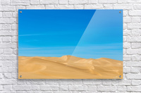 Painters dream  Acrylic Print