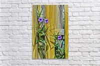 Fence Flowers 1  Acrylic Print