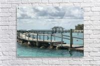 Dolphin Cove  Acrylic Print