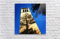 48681751728_95666da713_o  Acrylic Print