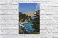 Para-Paradise  Acrylic Print
