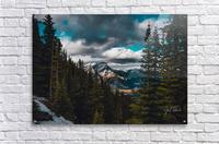 Cascade Mountain Through The Trees  Acrylic Print