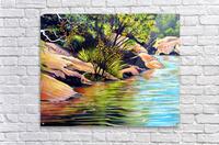 Jellybean Pool Australia  Acrylic Print