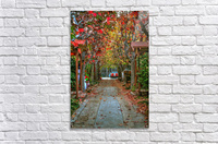 Fall in the city  Acrylic Print