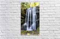 Rainbow Springs Falls  Acrylic Print