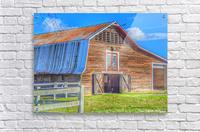 Barn Life.....  Acrylic Print