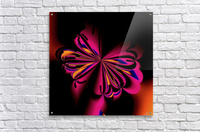 Fly_fly_fly_take_1  Acrylic Print