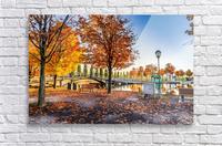 _TEL6354 Edit  Acrylic Print