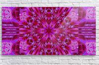 Wildflower in Pink Bloom  Acrylic Print
