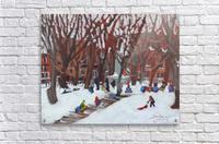 Park LaFontaine Tobogganing  Acrylic Print