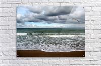 A sense of freedom by the beach  Acrylic Print