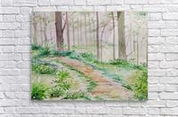 Landscape_DKS_2  Acrylic Print
