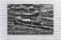 chama freight train B&W  Acrylic Print