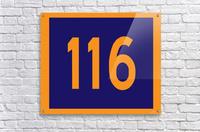 Number 116  Acrylic Print