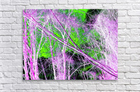 Tree on a Line  Acrylic Print