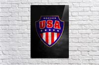 USA  Acrylic Print