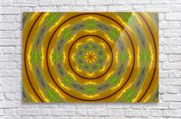 Sunflower G K1  Acrylic Print