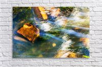River I  Acrylic Print