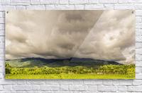 Nature IV  Acrylic Print