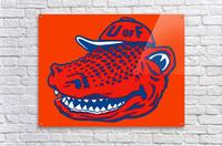 Vintage Florida Gators Wall Art  Acrylic Print