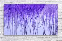 Blue Sticks  Acrylic Print