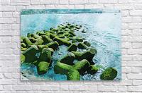 Wall Nature Decoration 7  Acrylic Print