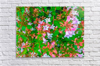 closeup blooming pink flowers with green leaves  Acrylic Print