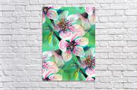 Japanese Sakura Cherry Blossom   Acrylic Print