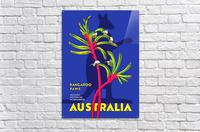 Kangaroo Paws Australia  Acrylic Print