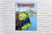 Burgenstock  Acrylic Print
