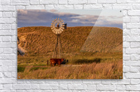 Late Afternoon Drink In The Sandhills  Acrylic Print